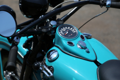 Classic48style-BlueGreen-499A8311_1280