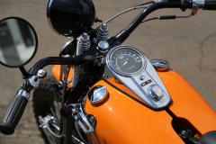 Rodeo_48Pan_Orange-009