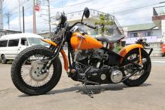 Rodeo_48Pan_Orange-018