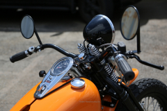 Rodeo_48Pan_Orange-013