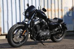 XL1200X-Rodeo-499A5075