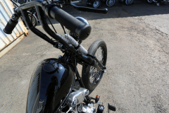 Rodeo_KN_Springer012