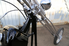 Rodeo_Super-Long35_Shv_005