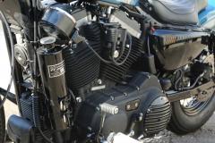 XL1200XBuleCustom0020