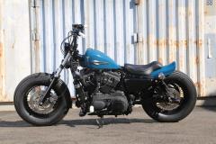 XL1200XBuleCustom0022